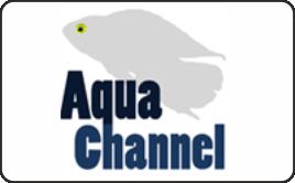 aqua EXPO Tage - Videobericht Aqua Channel