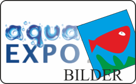 aqua EXPO Tage Bilder