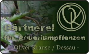 aqua EXPO Tage - Gärtnerei für Aquarienpflanzen Oliver Krause