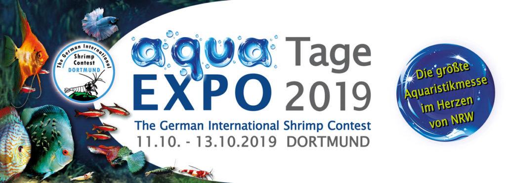 Aqua Expo Tagede Die Aquaristikmesse In Dortmund
