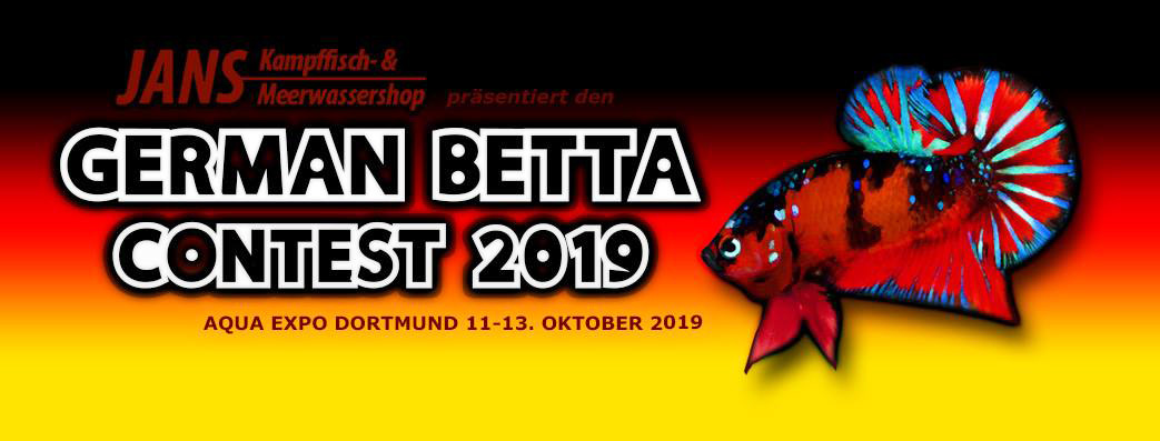 German Betta Contest