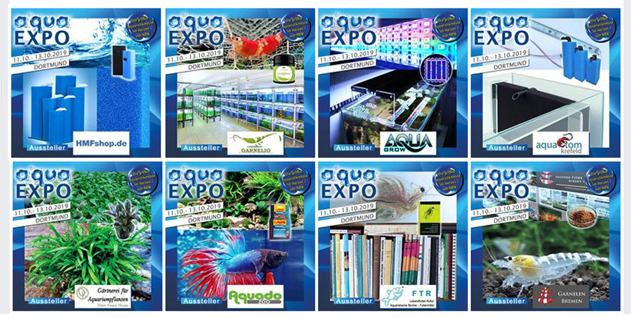 facebook Präsentation der Aussteller der aqua EXPO Tage